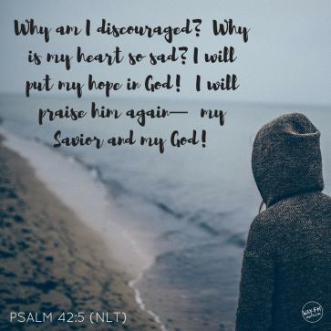 not discouraged